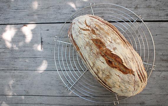 Nová sociální síť? Místo fotek si lidé vyměňují chlebový kvásek!