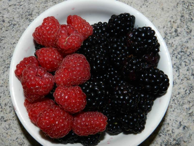 Ovocné jogurtovo-kyškové osvěžení