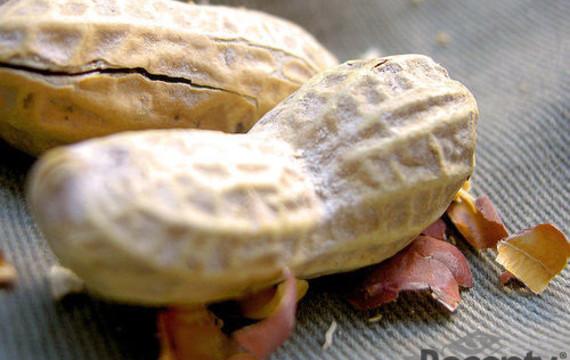 Arašídy (burské ořechy, buráky)