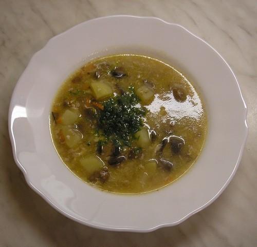 Jednoduchá polévka s houbami