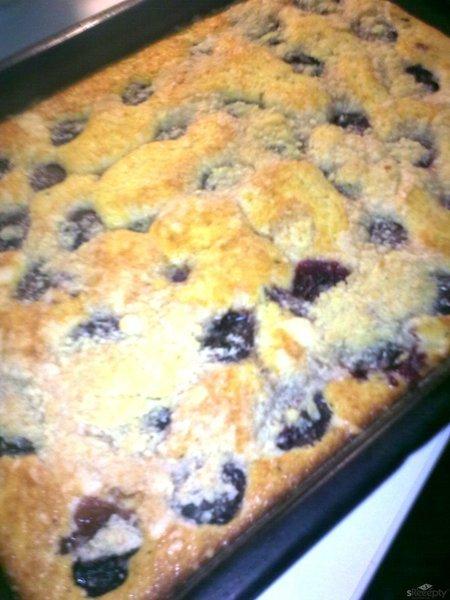 Chatařský švestkový koláč