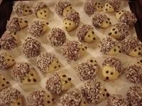 Vánoční ořechoví ježci