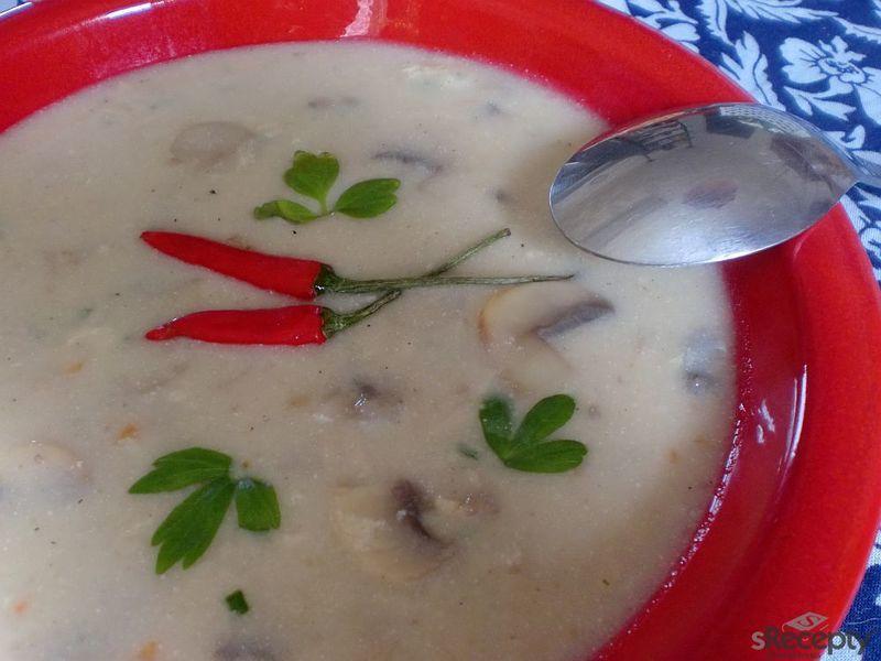 Maďarská žampionová polévka