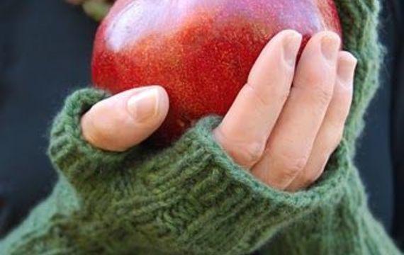 Zázračné granátové jablko aneb Co jsme o něm nevěděli