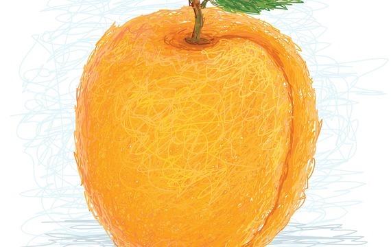 Meruňky - elixír zdraví