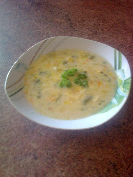 Naše oblíbená pórková polévka