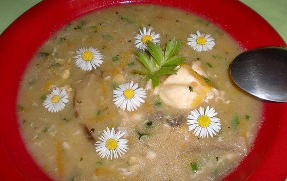 Jarní sedmikrásková polévka