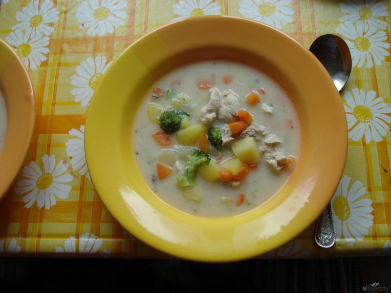 Zeleninová polévka s krůtím masem