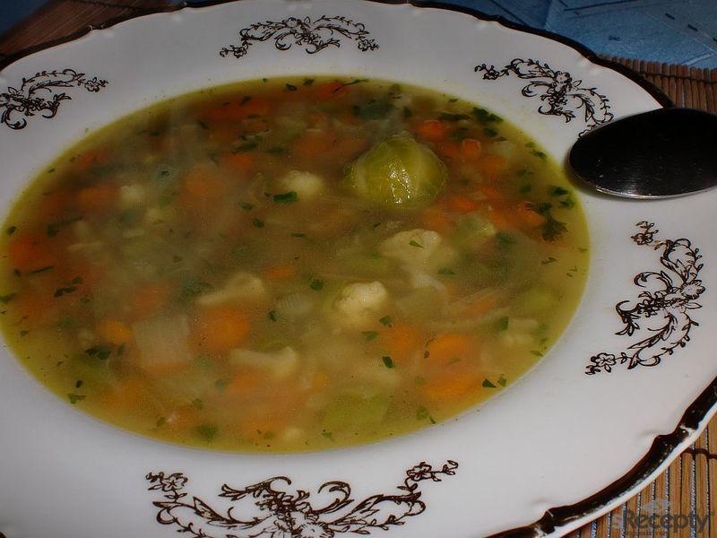 Studentská polévka