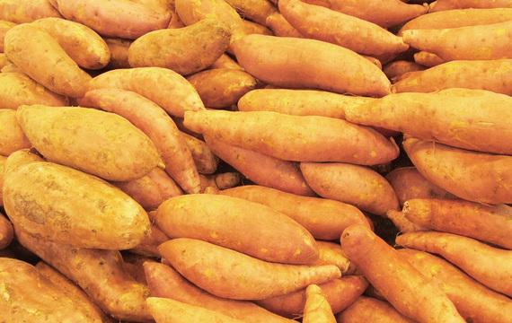 Batáty - znáte tyto sladké brambory?