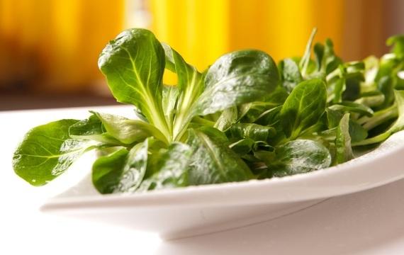 Polníček - skvělý na saláty