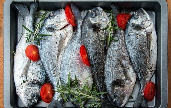Které ryby se hodí na gril?