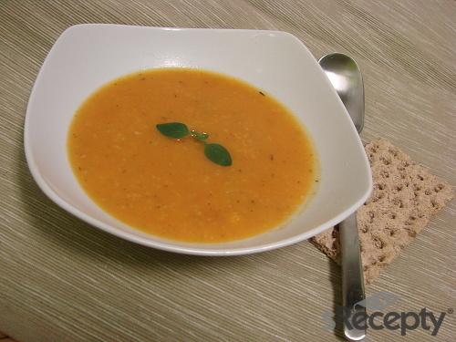 Rajská polévka bez protlaku