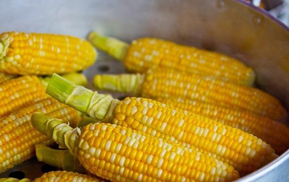 Skvělé pokrmy z kukuřice