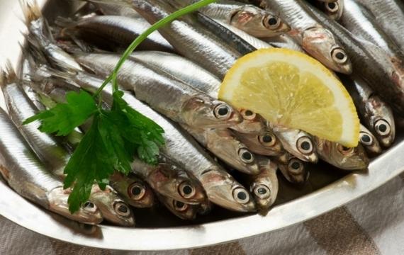 Středomořská delikatesa - ančovičky