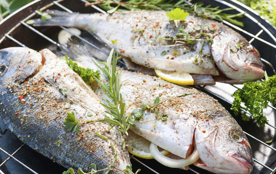 Vynikající mořské ryby