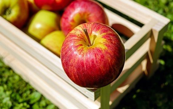 Dušená jablka plněná ořechy