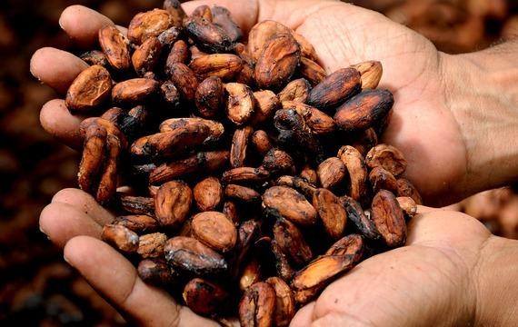 Kakaové kroužky