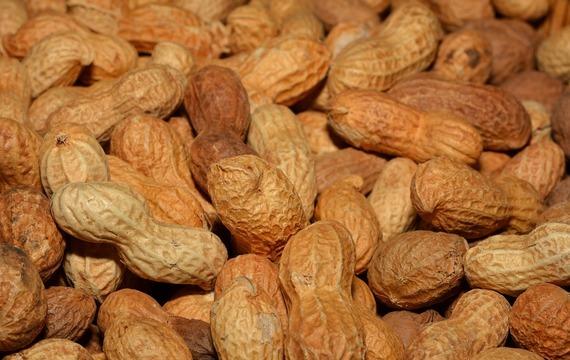 Kuřecí prsa v arašídovém těstíčku