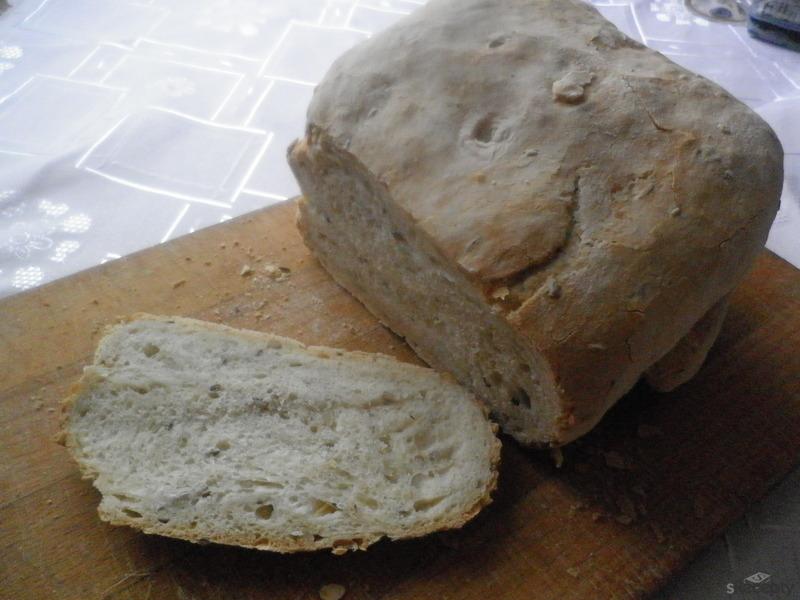 Chleba bez hnětení a bez pekárny