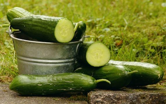 Okurkový salát s olivami