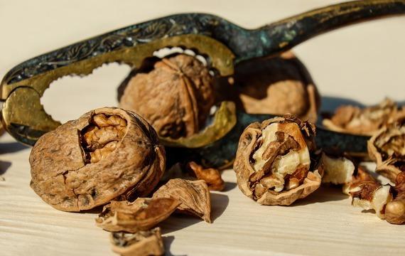 Ořechové chlebíčky