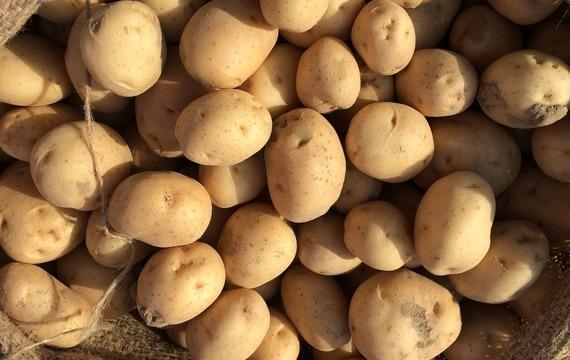 Bramborák z vařených brambor a jablek