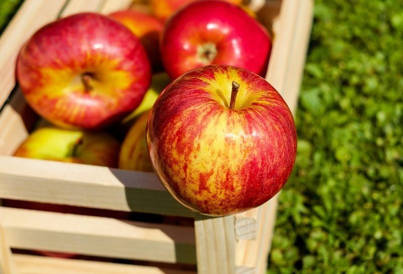 Jablkový salát