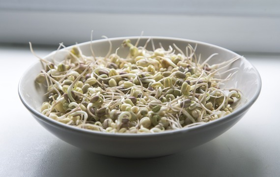 Zeleninový salát s klíčky munga a jádelem