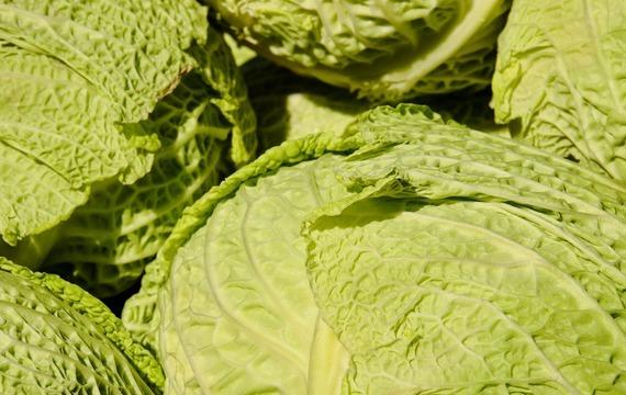 Zeleninové šátky