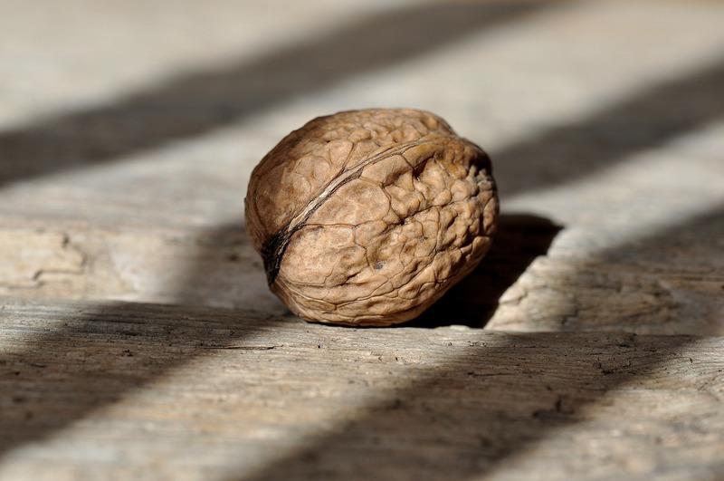 Zelí s ořechy