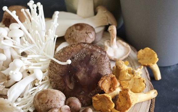 Asijské houby v kuchyni