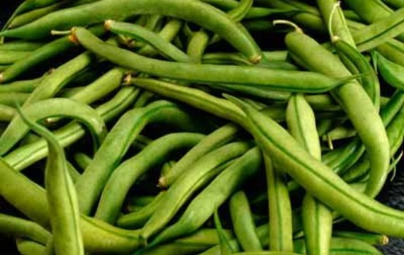 Fazolky (zelené fazolové lusky)