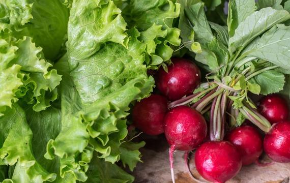Kterým potravinám bychom měli v únoru věnovat největší pozornost?