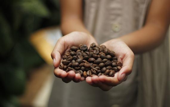 Deset důvodů, proč pít kávu každý den