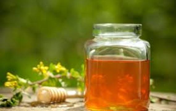 Jetelový med