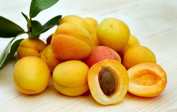 Meruňky podporují imunitu. Důvodů, proč je jíst, je ale mnohem víc!
