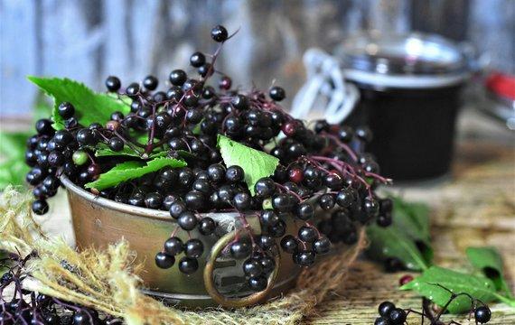 Bezinkový likér - nevařený, podle rodinné tradice
