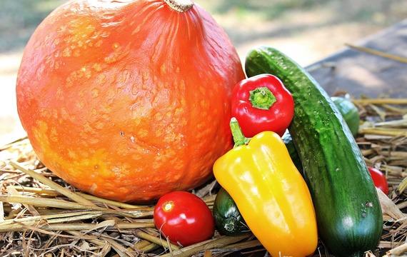 Potraviny, s kterými posílíte svůj imunitní systém a zaženete každou nemoc