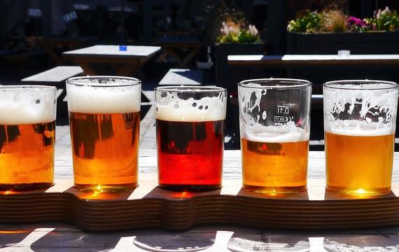 Kdo by nemiloval pivo! Umíte se v něm ale vyznat?