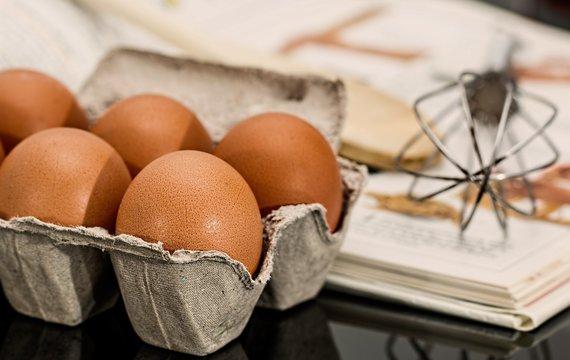 Podle čeho si vybrat slepičí vajíčka?