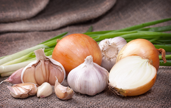 Naučte se skladovat česnek a cibuli