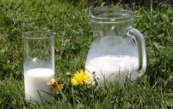 Trápí vás alergie na kravské mléko? Vyzkoušejte tyto 4 alternativy