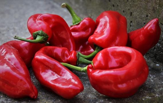 Proč jíst papriky?