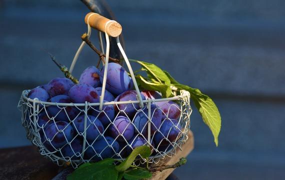 Začněte jíst švestky! Podpoříte tím vaše zdraví