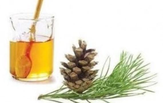 Piniový med