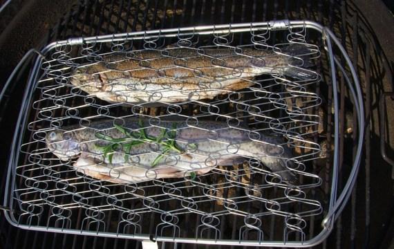 Grilujeme ryby